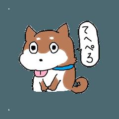 柴犬コロちゃんのスタンプ