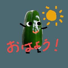 生野菜生活!