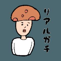 【きのこ】JK 語・流行語詰め合わせ