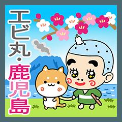 エビ丸・鹿児島弁(訳つき)