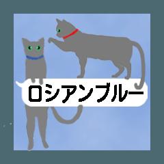 吹き出し『ロシアンブルー』(猫シルエット)