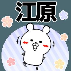 江原の元気な敬語入り名前スタンプ(40個入)