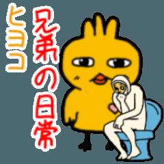 ヒヨコ兄弟の日常