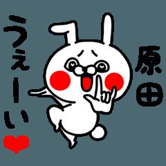 [LINEスタンプ] 原田ちゃん専用ラブラブ名前スタンプ