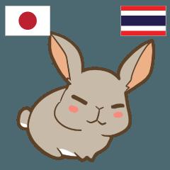 [LINEスタンプ] ウサギ 信頼しなさい 日本タイ