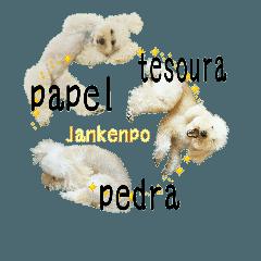 おうちプードルのポルトガル語ジャン犬ポン