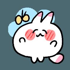 mothi rabbit2