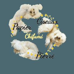 おうちプードルのフランス語でジャン犬ポン