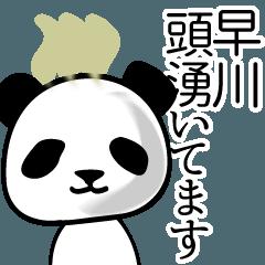 早川■面白パンダ名前スタンプ